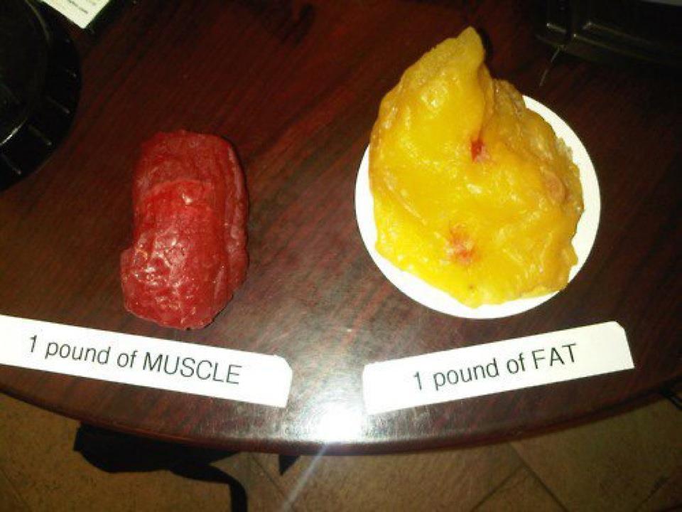 Die Diät für die Abmagerung ohne Verlust der Muskelmasse